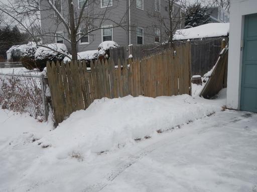 January 21 2012